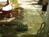Patio Project-006.jpg