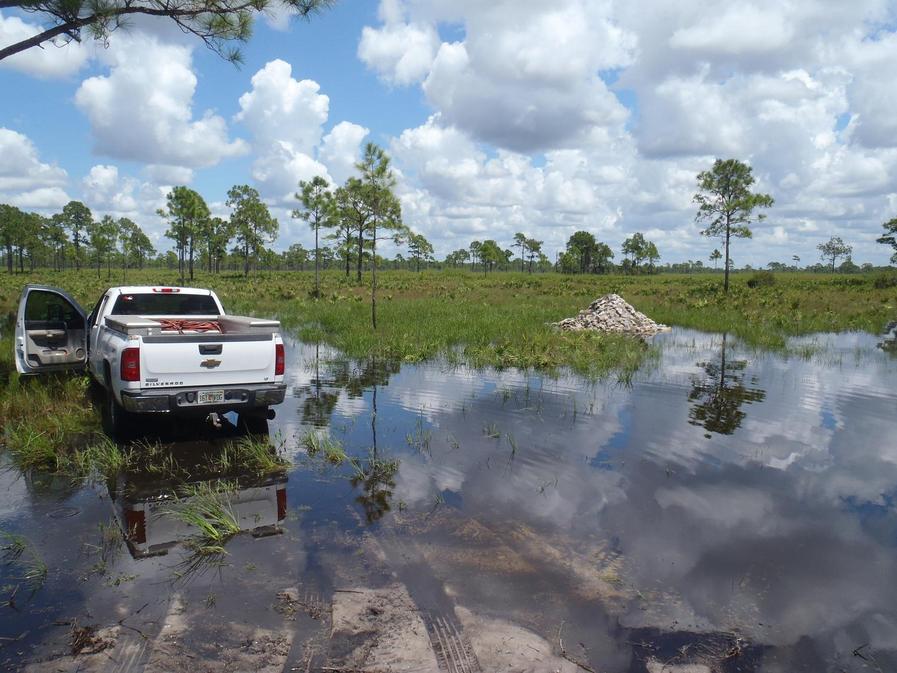 Florida bowhunt-007.jpg