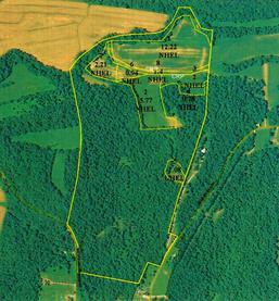 115 Acres - Christian County, KY-115-acres.jpg