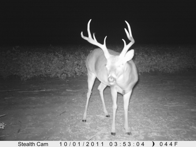 2011 Kansas Trophy Whitetail hunts. Bow, Muzz and Rifle-158.jpg