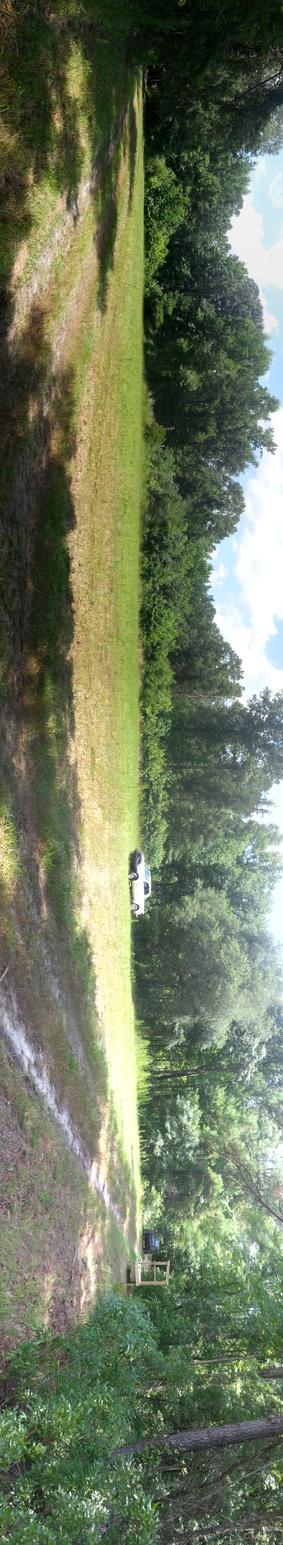 1762 Acres Jasper county South Carolina Hunting Club-20140707_125404.jpg