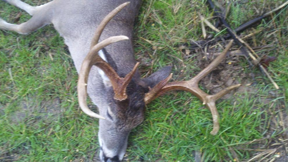 I love hunting in the rain!!-9pt-pic-1.jpg