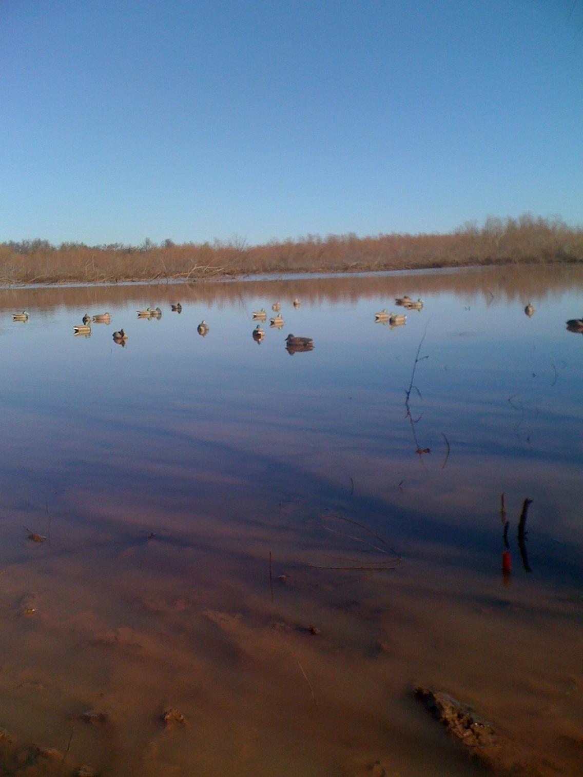 Duck Hunting!-aaa.jpg