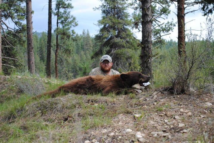 Idaho Bear Hunts for May 2011-bear1.jpg