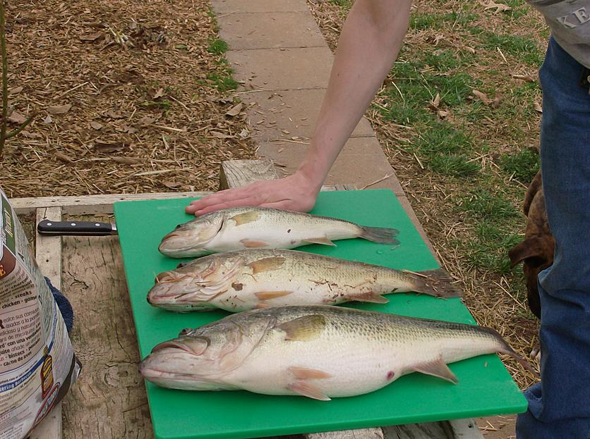 Fishing pics-hpim0419.jpg