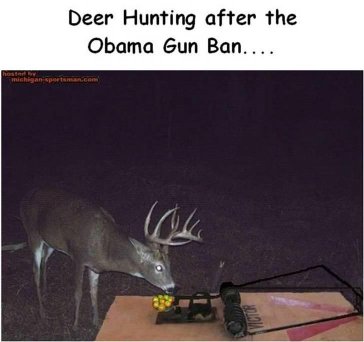 Gun Ban-image001.jpg