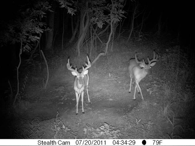 Hunting Season-kentucky-2011.jpg