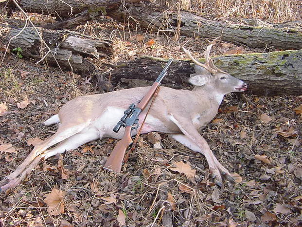 Would you do it?-ky-cull-buck-10.jpg