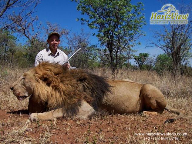 Hunt Africa-lion01.jpg