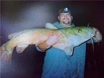 Catfishing-me.jpg