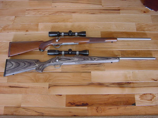 Like those SS rifles-pair-ruger-hawkeyes-ss.jpg