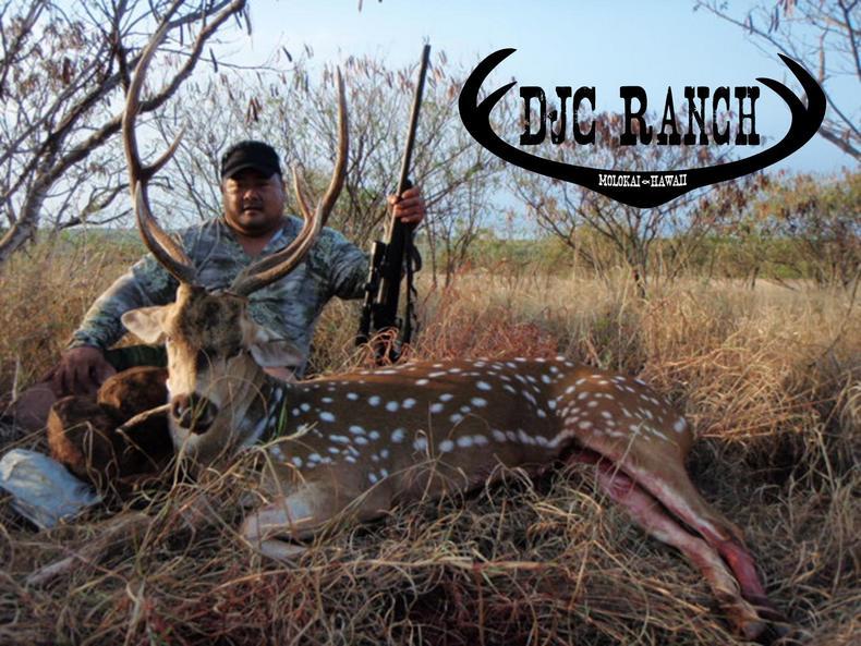 Molokai, Hawaii Axis Deer Hunt-picture1.jpg