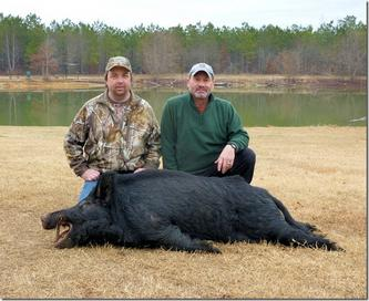 Great Georgia Hog Hunt-securedownload.jpg