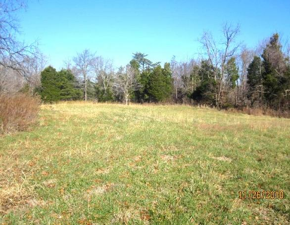 90 acres for sale in Western KY-see1.jpg