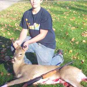 doe with shotgun